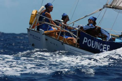 Pouncer takes part in Antigua Classics race week