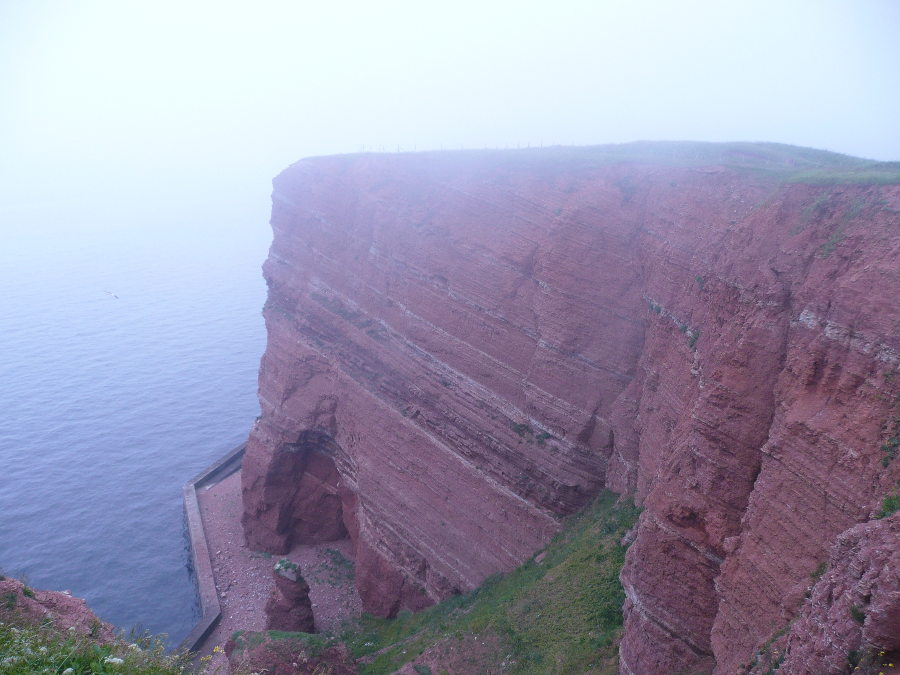 Helgoland cliffs in the morning mist