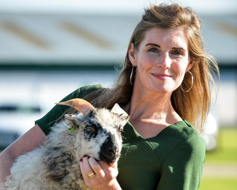Amand Owen the Yorkshire Shepherdess. Sheep Drive